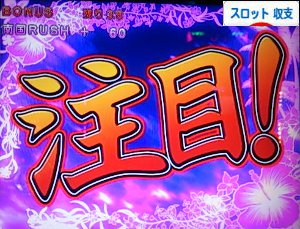 20130630_cr.jpg